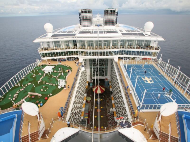 Terrain-Basket-Oasis-of-the-Seas