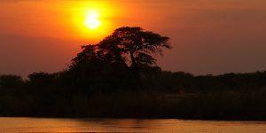Laissez-vous tenter par une croisière en Afrique Australe